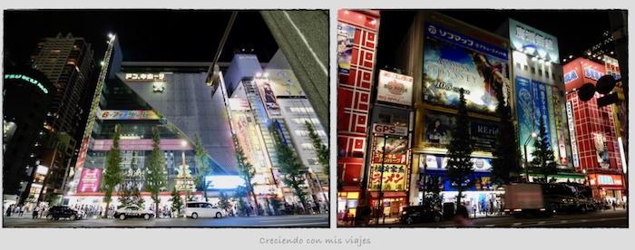 Akiba.001 1 - De vuelta en... ¡Tokyo!