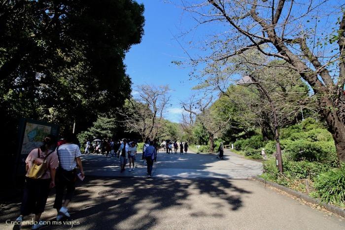 IMG 6259 - De vuelta en... ¡Tokyo!