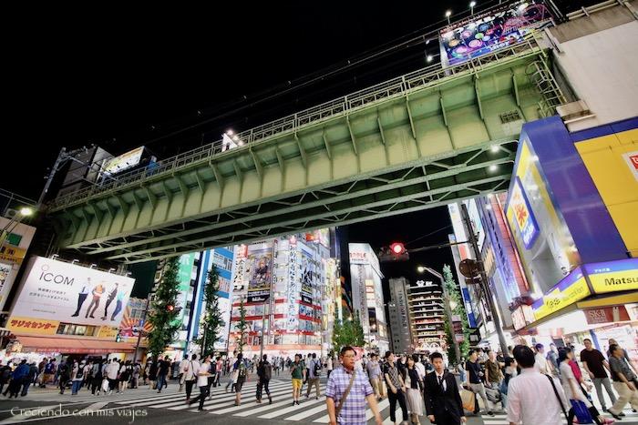 IMG 6277 - De vuelta en... ¡Tokyo!