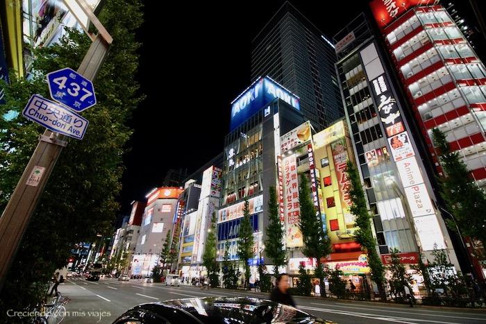 IMG 6278 - De vuelta en... ¡Tokyo!