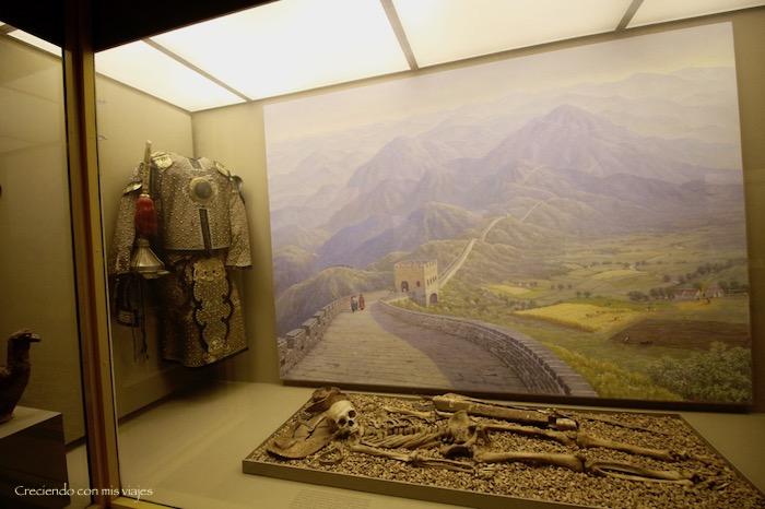 IMG 7660 - Museo Historia Natural, Roosevelt y compras
