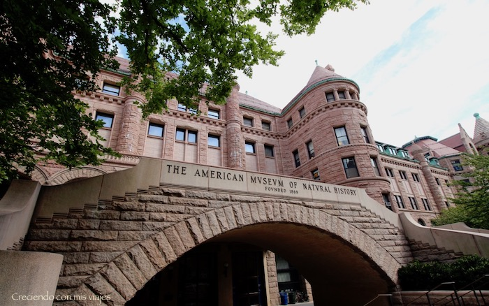 IMG 7695 - Museo Historia Natural, Roosevelt y compras