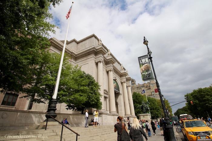 IMG 7696 - Museo Historia Natural, Roosevelt y compras
