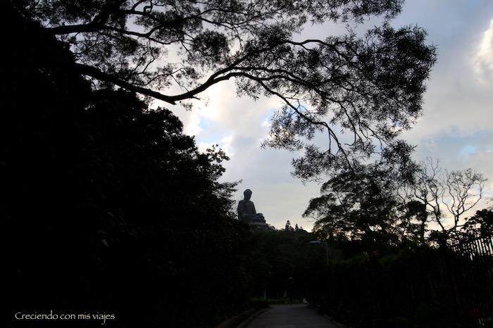 IMG 9207 - Isla de Lantau