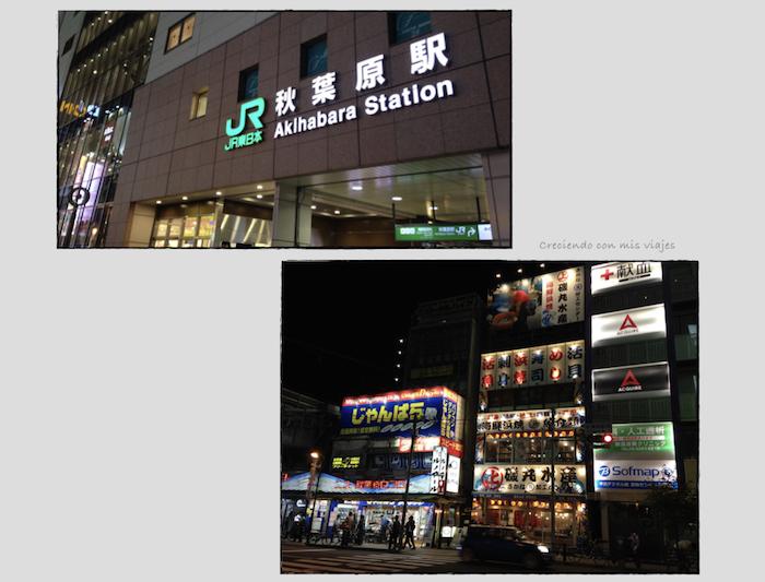 Akiba.007 - Nakano Broadway, Shinjuku, Tokyo Sta. y Akihabara