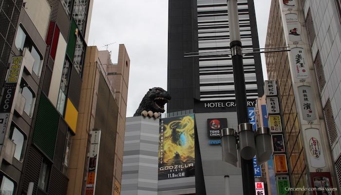 IMG 6286 - Nakano Broadway, Shinjuku, Tokyo Sta. y Akihabara