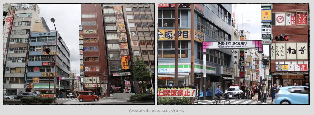 Kabukicho - Nakano Broadway, Shinjuku, Tokyo Sta. y Akihabara