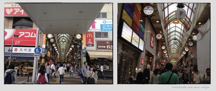 Nakano - Nakano Broadway, Shinjuku, Tokyo Sta. y Akihabara