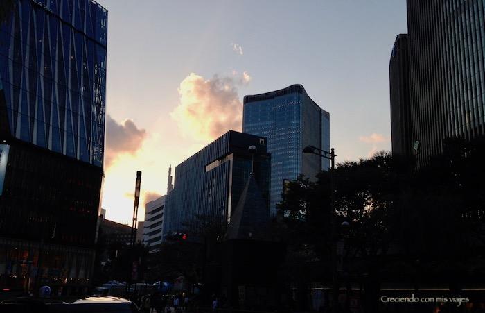 IMG 7054 - Skytree, Zojoji, Roppongi y Ginza