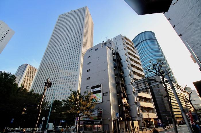 Ikebukuro - Kawagoe, Ikebukuro y Shibuya