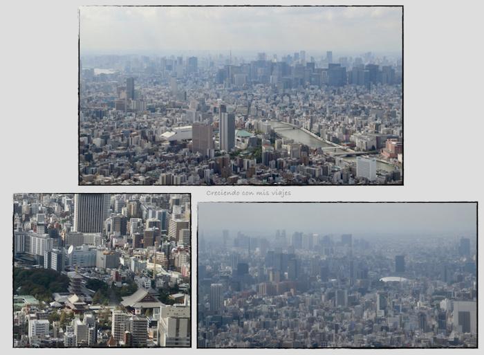 Tokyo.001 - Skytree, Zojoji, Roppongi y Ginza